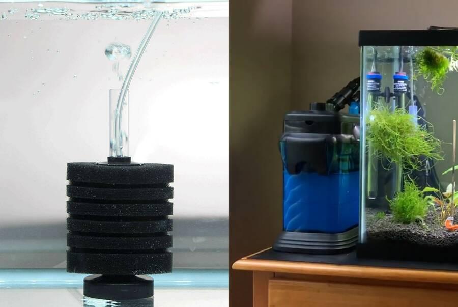 sponge filter vs canister filter