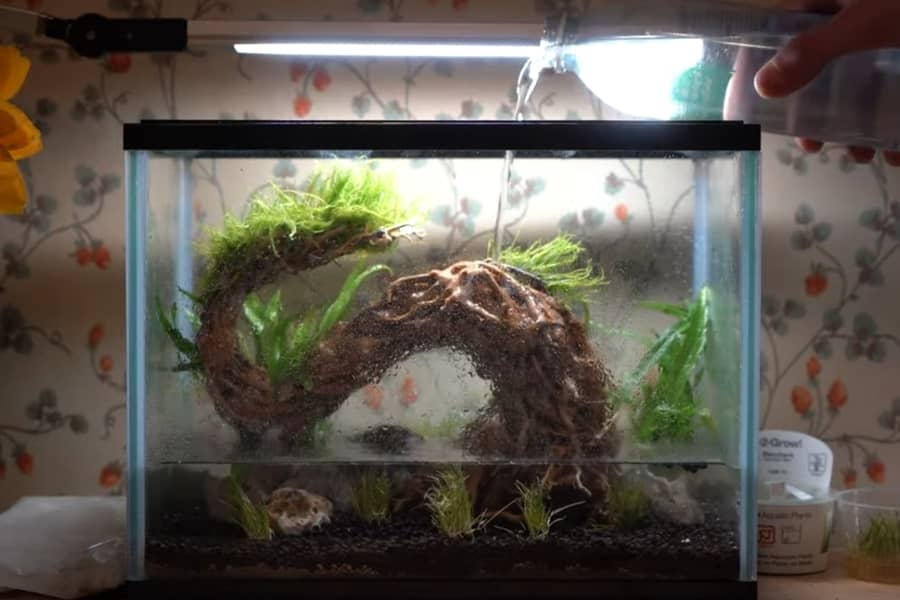 is spring water good for fish tanks